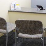 Boone Memorial Hospital Admissions Area